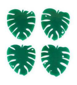 Photo of Lush Monstera Coasters